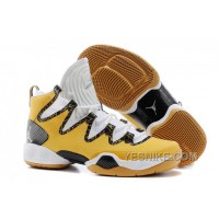 "Big Discount! 66% OFF! Air Jordans XX8 SE ""Finals"" PE For Sale SDyAZ"