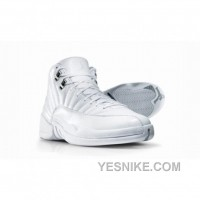 Big Discount! 66% OFF! Air Jordan 12 Silver Anniversary Collection Neutral Grey Metallic Silver
