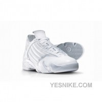 Big Discount! 66% OFF! Air Jordan 14 Silver Anniversary Collection Neutral Grey Metallic Silver